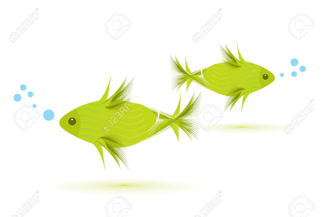 fish isolated on white, illustration Stock Vector - 6633312