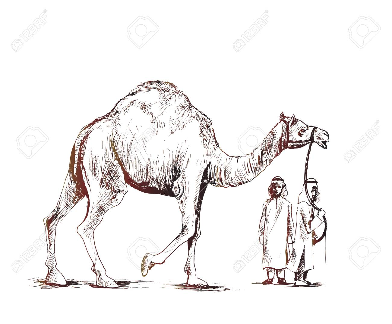 Arab man standing with a camel hand drawn sketch stock vector 100482468