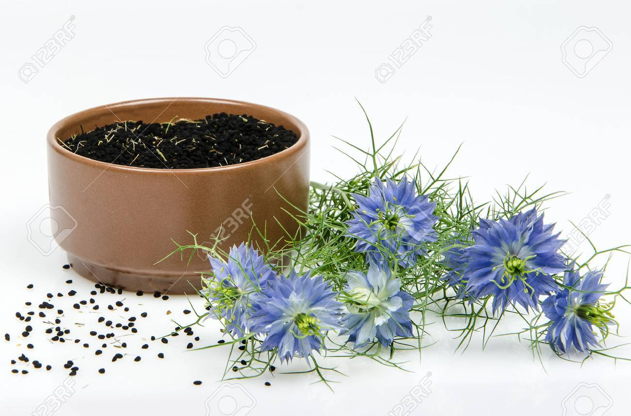 black cumin in bowl on white background - 62043050
