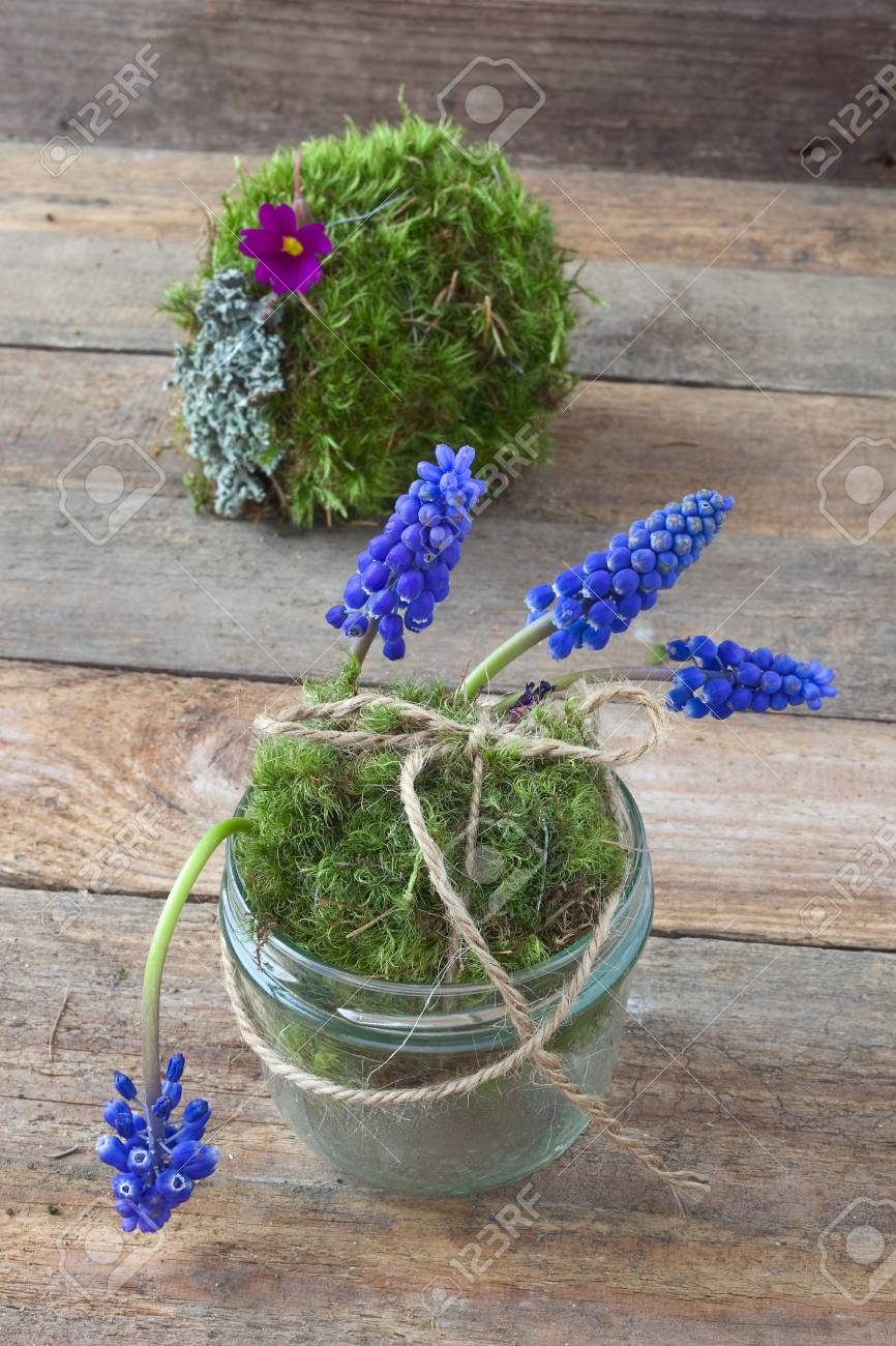 Decorative Moss Ball Garden Decoration. DIY Nature Craft. Stock ...