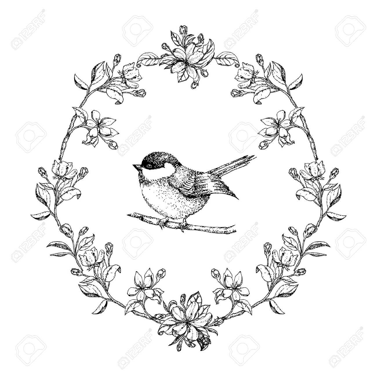 Vektor Jahrgang Runden Rahmen Mit Vögeln Und Blumen Apfel ...