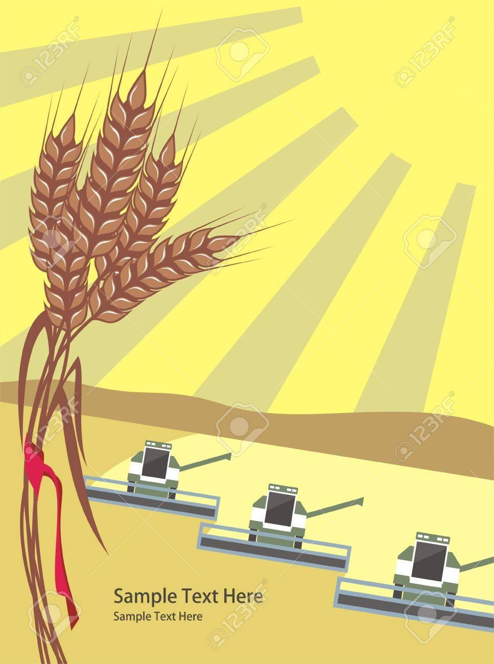 row of harvesters threshing wheat, vector - 10084337