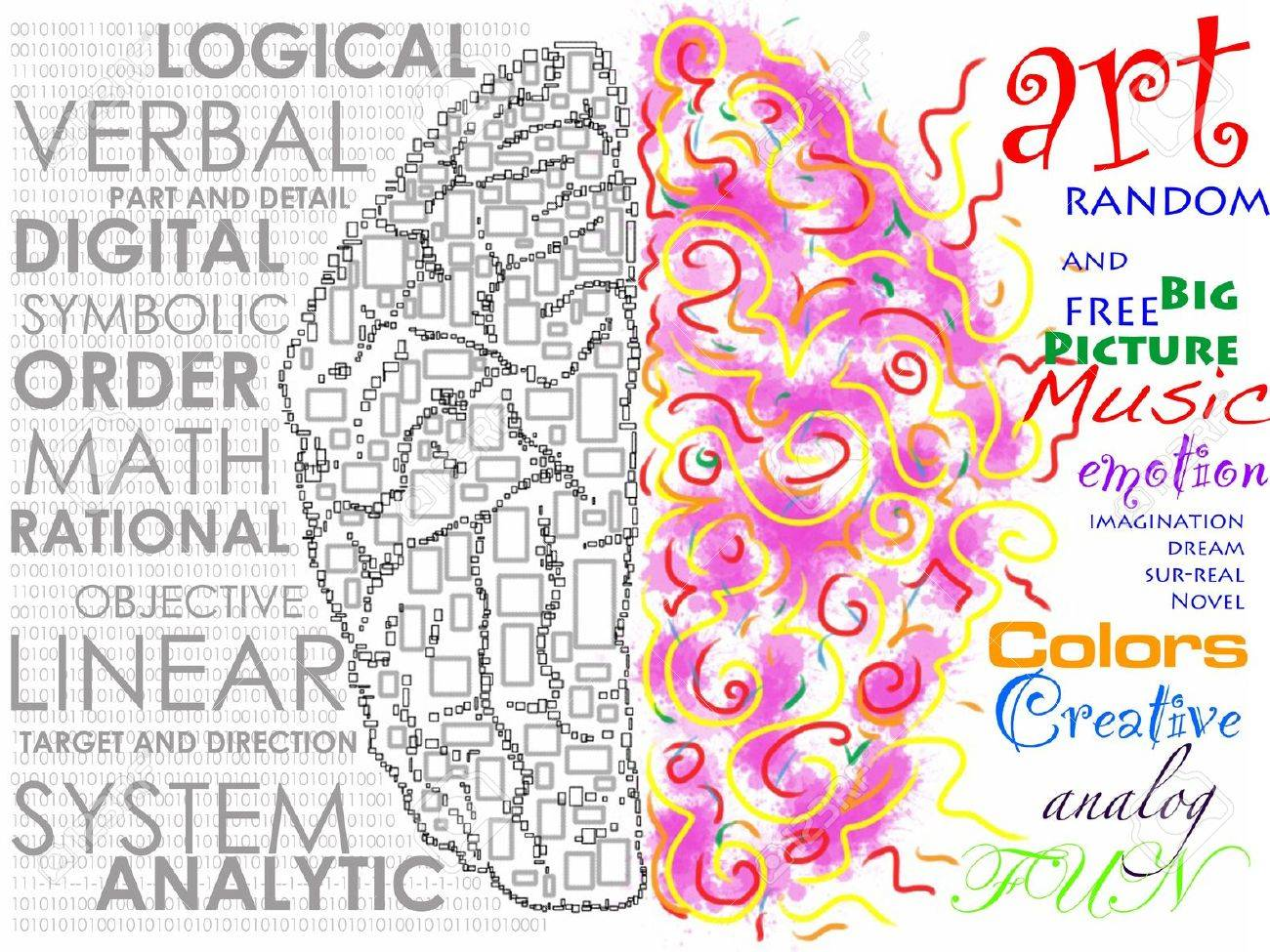 Left and Right brain function illustration Stock Photo - 12930785