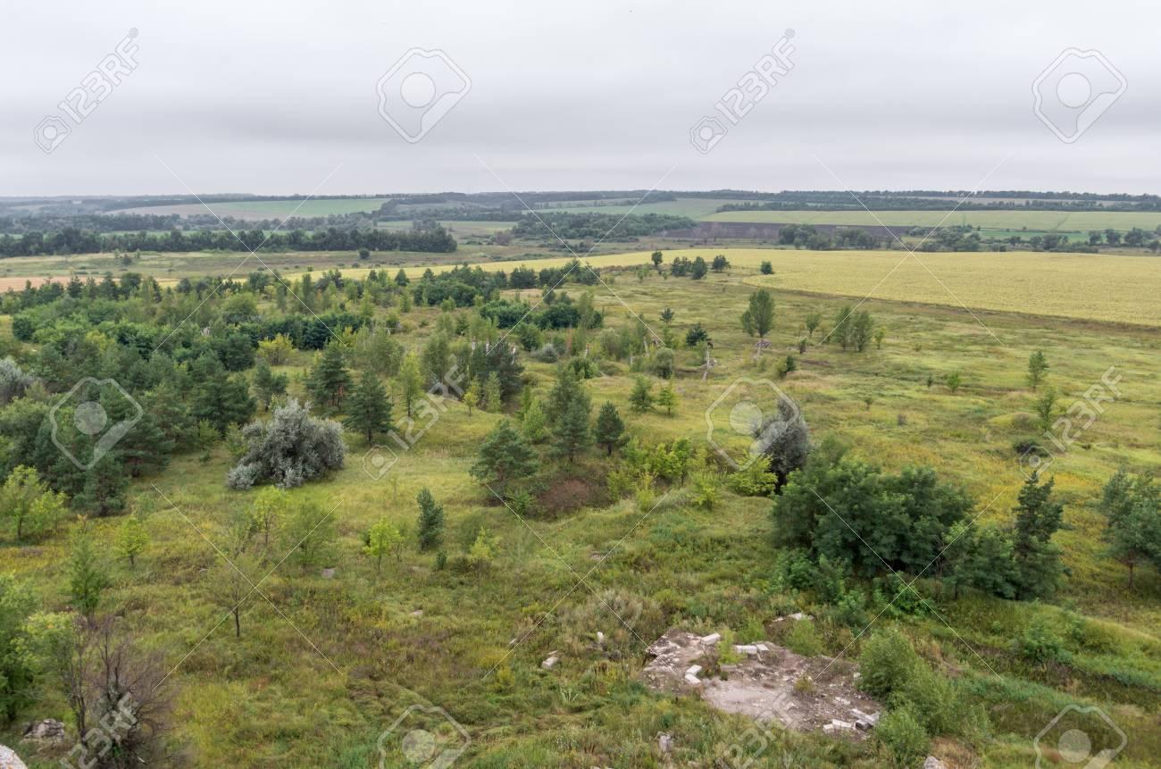 野原とウクライナ、夏の時間で屋...
