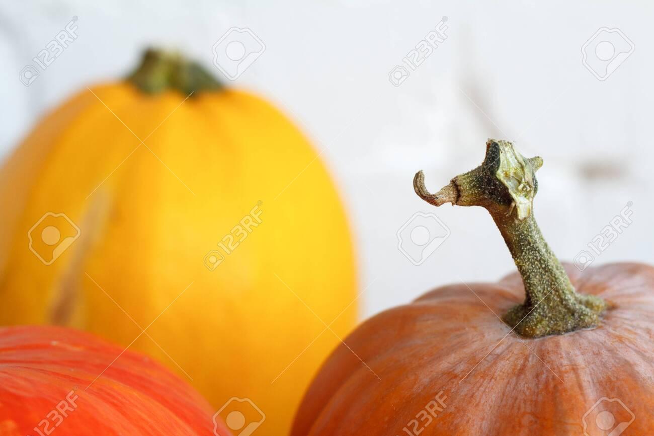 Close up autumn pumpkins on thanksgiving table, white brick backdrop, selective focus - 130565625