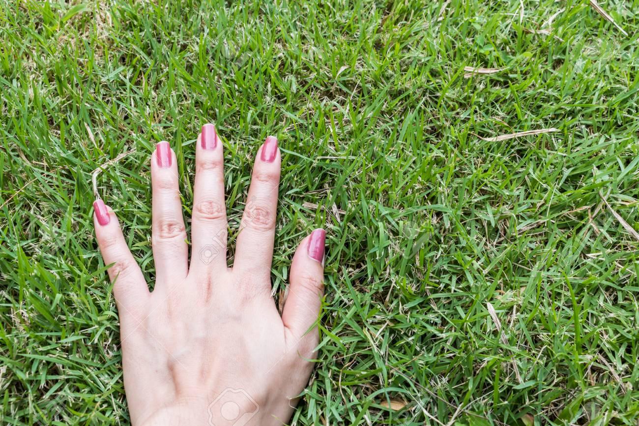 Cinco Dedos De Uñas Es De Color Rosa Sobre Fondo Verde Fotos ...