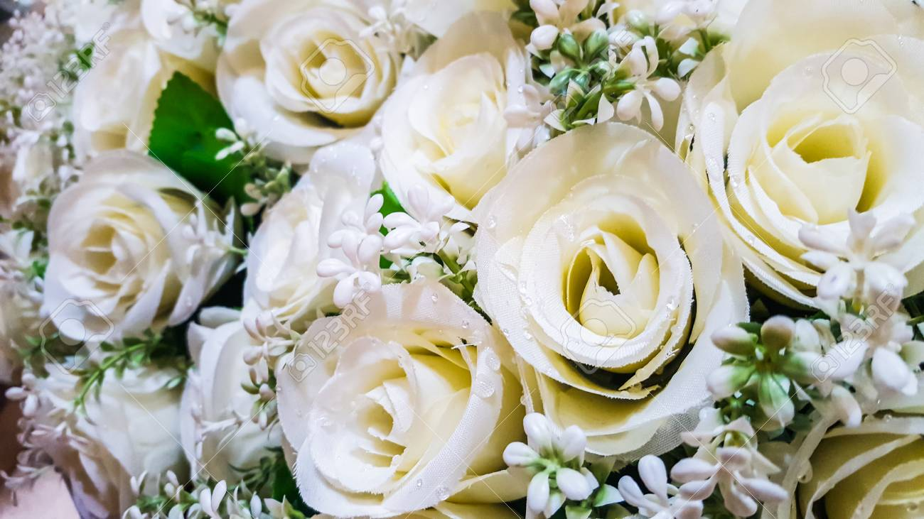 Hermosas Flores Rosas Blancas Hechas De Plastico Fotos Retratos