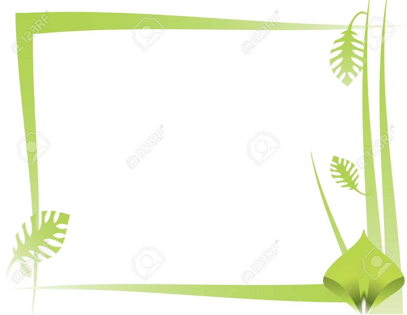 green leaf and abstract frame design on a white background stock photo 4067486