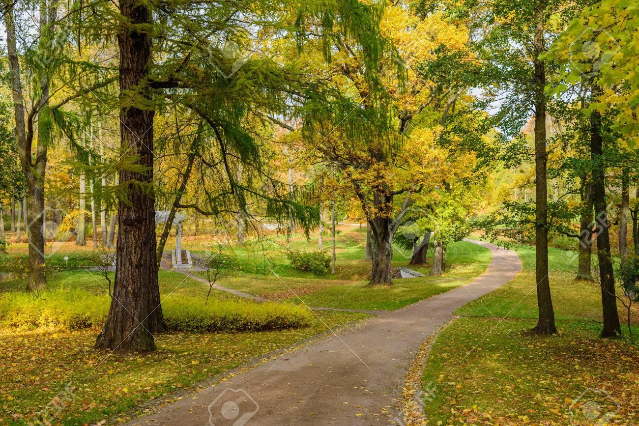 Misc: Nature Trees Park Fall Serenity Foliage Walk Beautiful ...