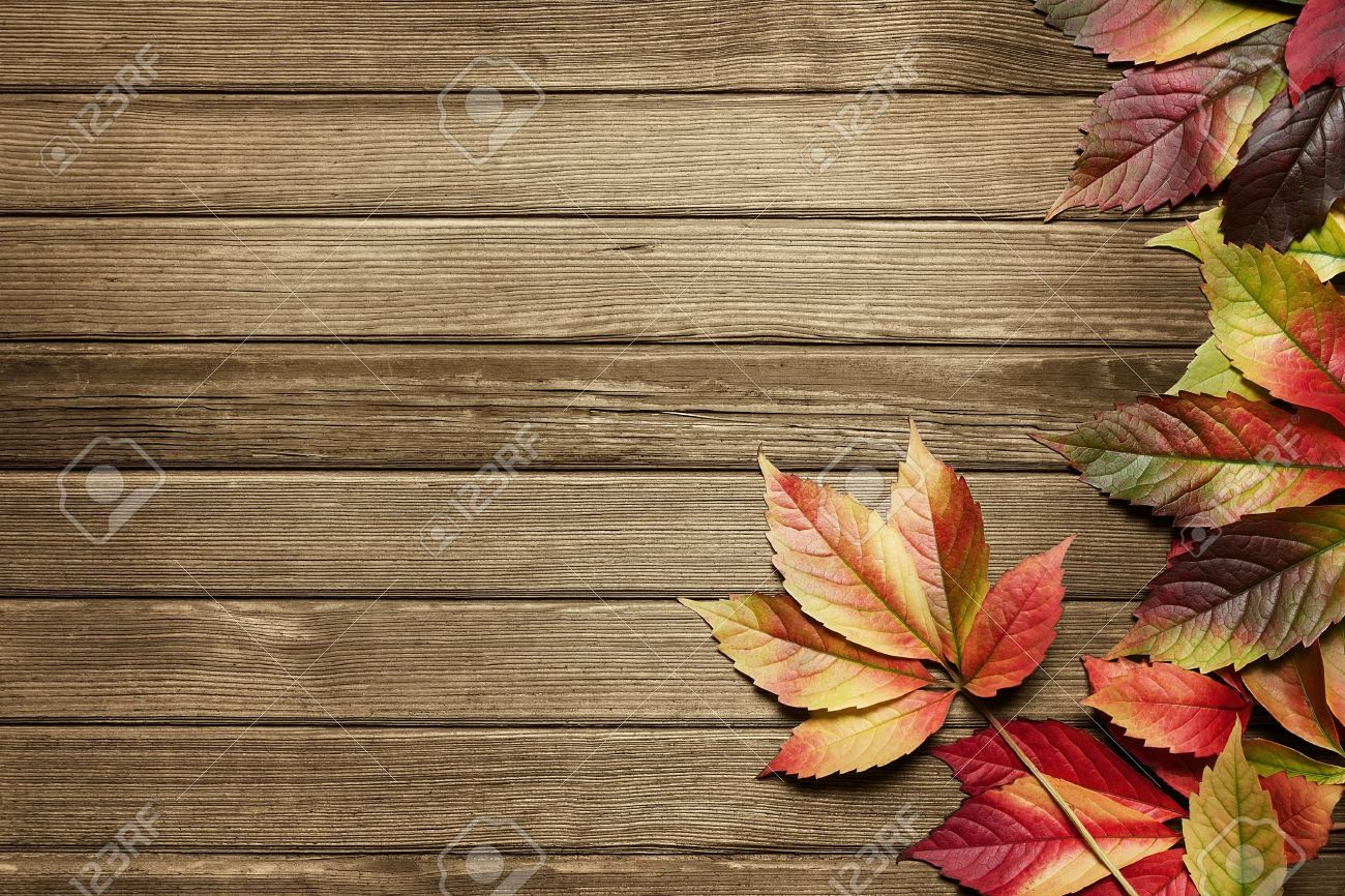 Autumn leaves over wooden background with copy space Stock Photo - 10736133