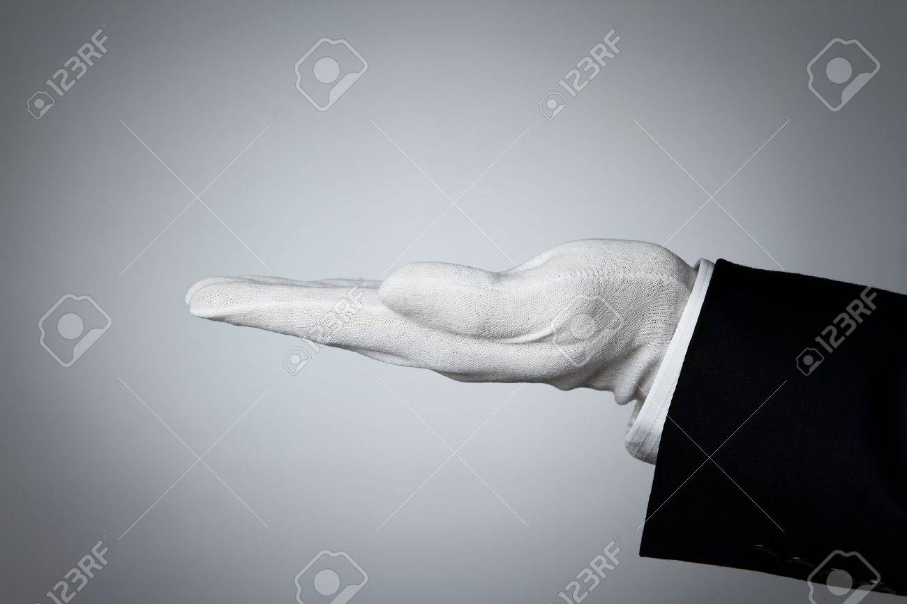 Side view of elegant human hand offering some product Stock Photo - 12000651