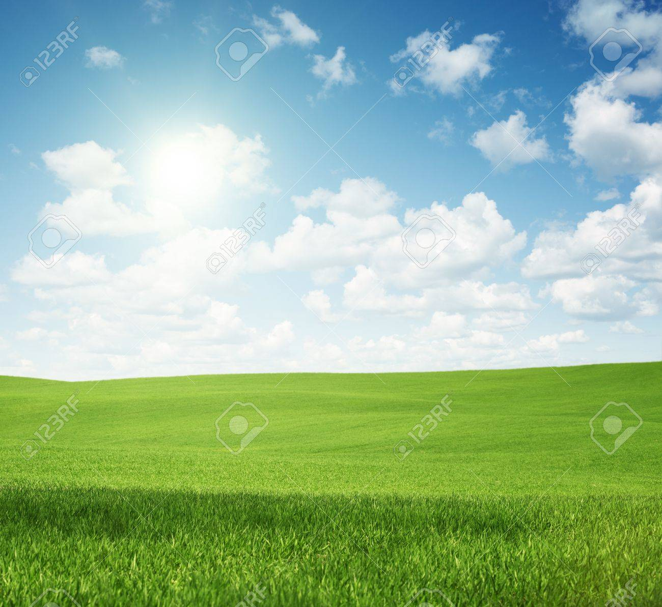 Rural landscape, empty green field with copy space - 20275194