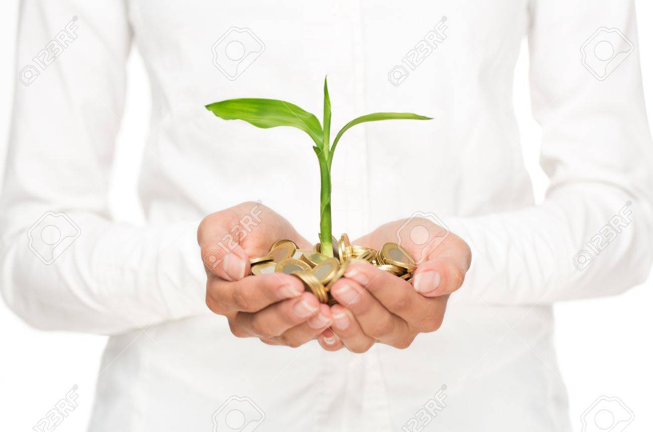Investment concept, close up of female hands holding stack of golden coins with small plant growing out of it - 22024025