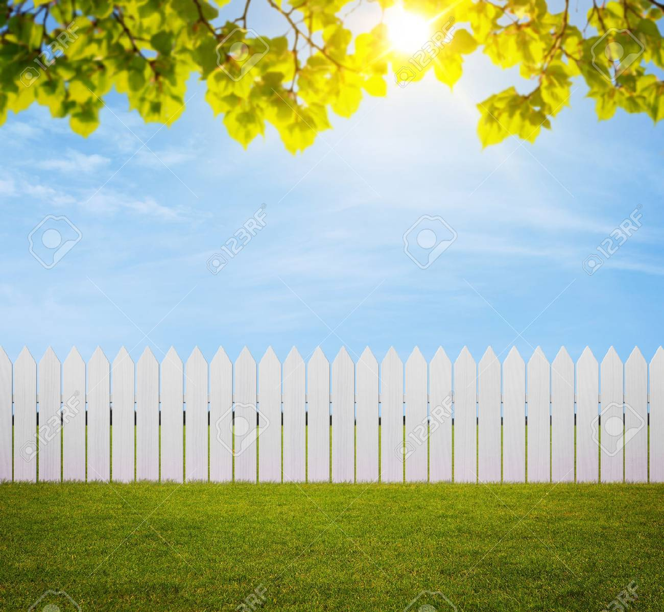 Close up of white wooden fence in the back yard with copy space - 31562903