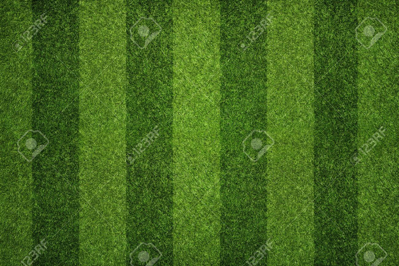 Striped soccer field texture, background with copy space Standard-Bild - 39373624
