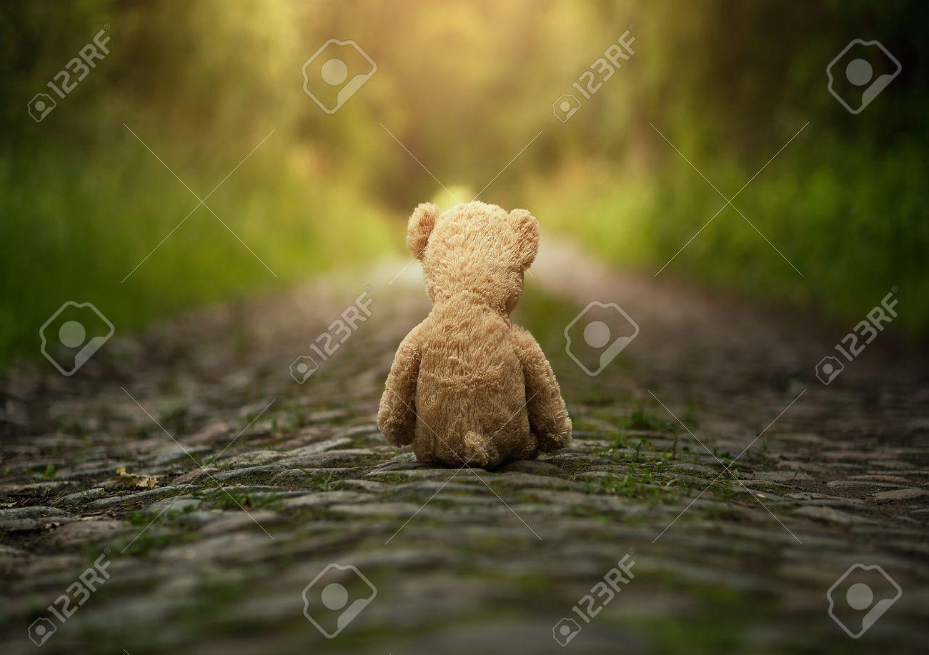 Lonely teddy bear on the road Standard-Bild - 42918991