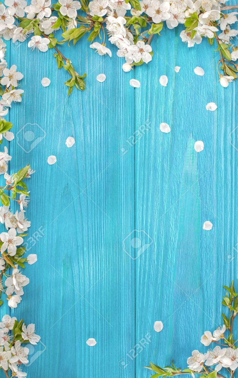 Spring background, frame of white blossom on old wooden board with copy space - 76997706