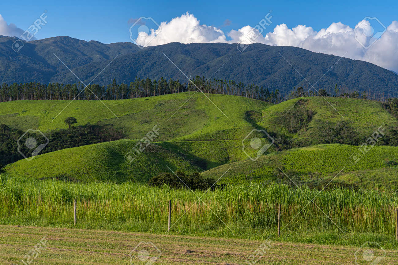 Beautiful view of green hill mountain field with blue sky and clouds background. - 169121467