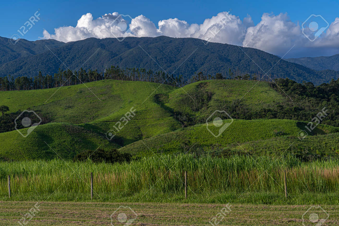 Beautiful view of green hill mountain field with blue sky and clouds background. - 169121473