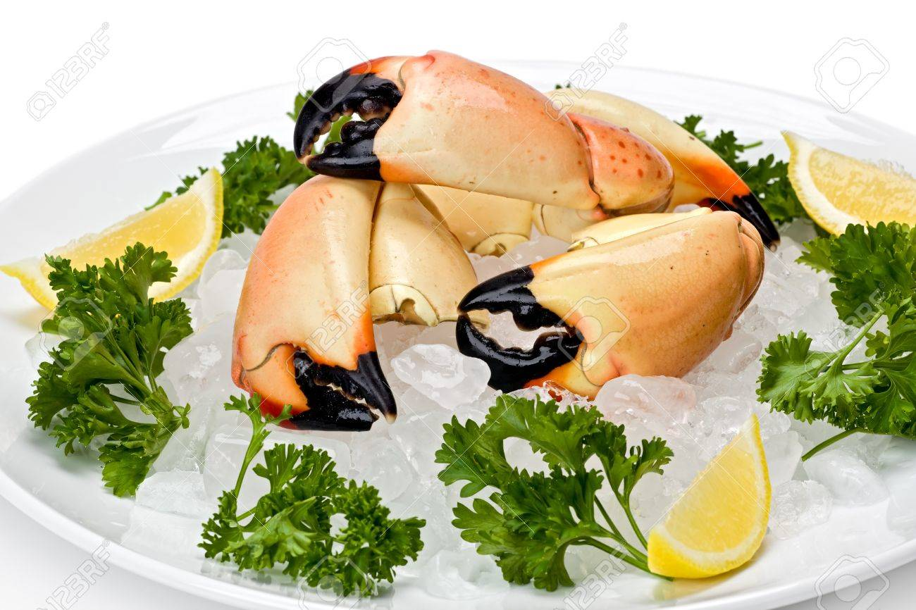 Florida stone crab claws on a bed of ice with lemon slices, and garnished with parsley. Stock Photo - 9103959