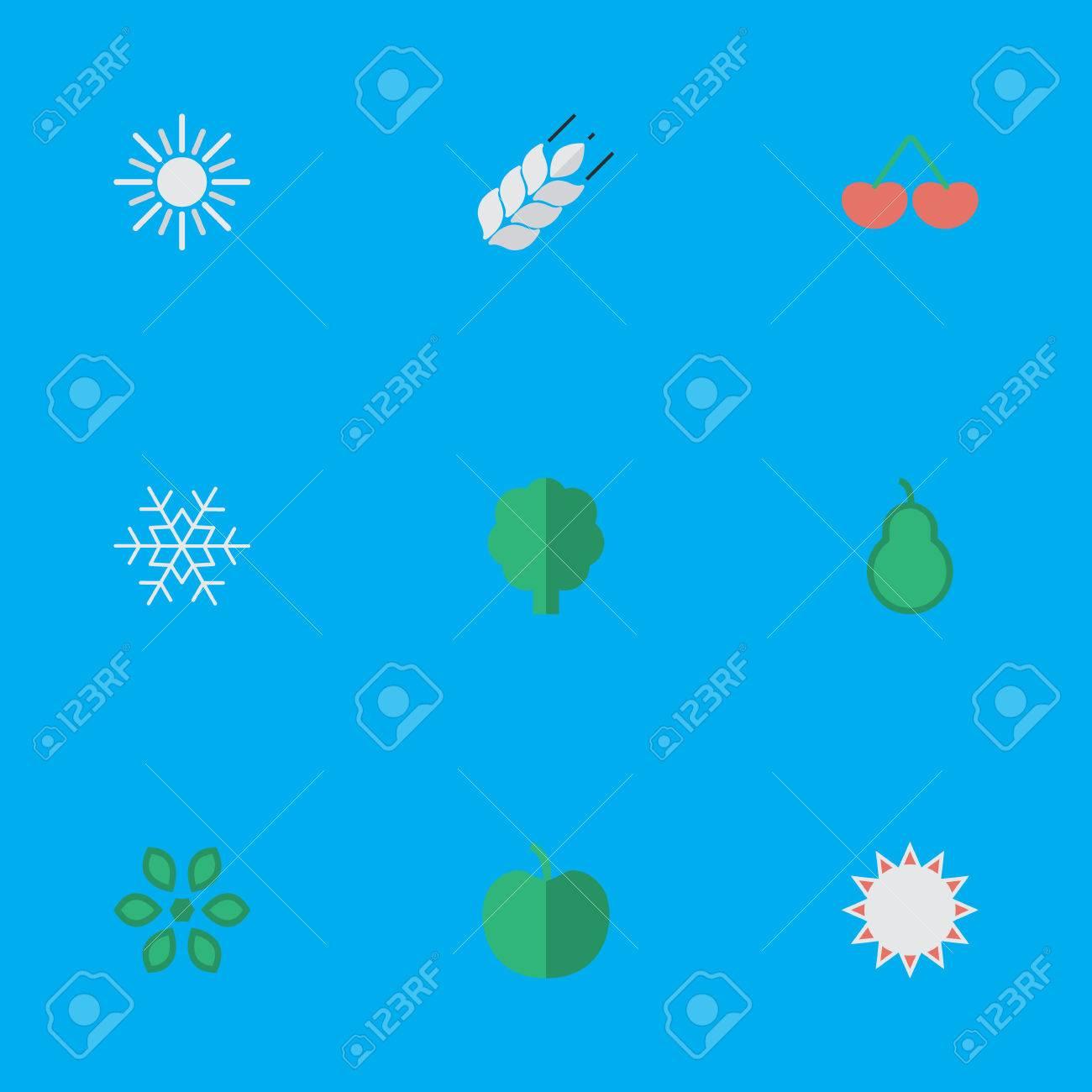 簡単な園芸アイコンのベクター イラスト セット雪サンドバッグ果物