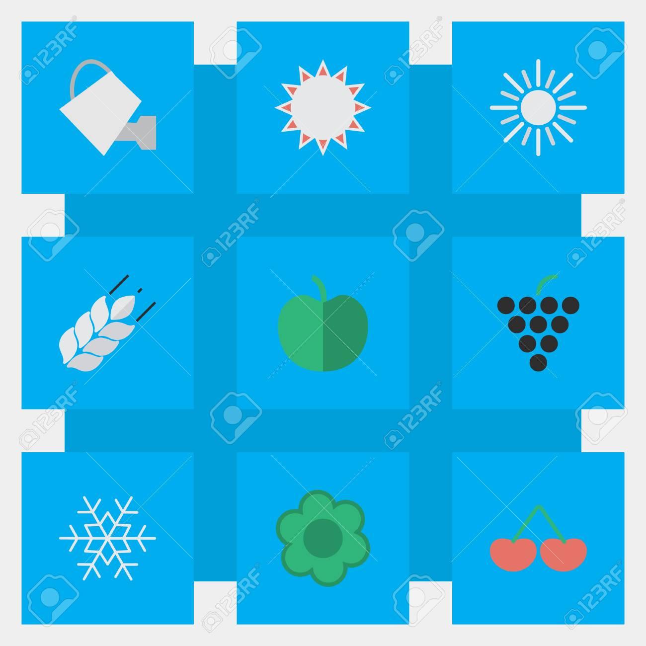 簡単な園芸アイコンのベクター イラスト セット果物の要素イラ雪や
