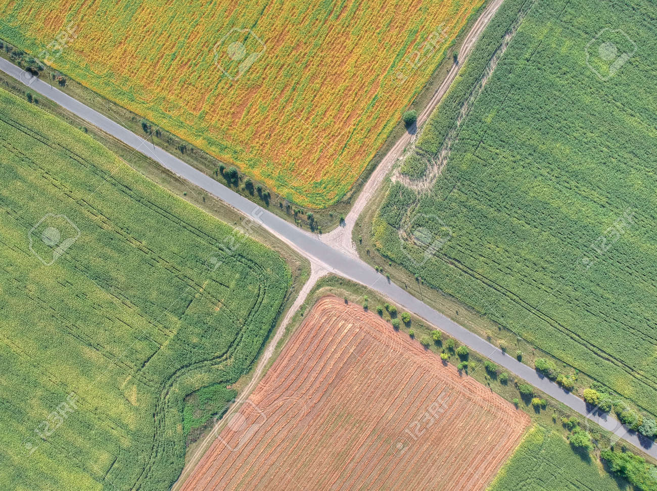 Aerial picture of the rural roads crossing the fields - 108851206