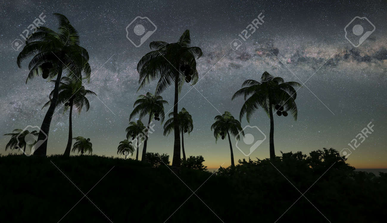 3d illustration of the palms against the sparkling stars of Milky Way - 133378154