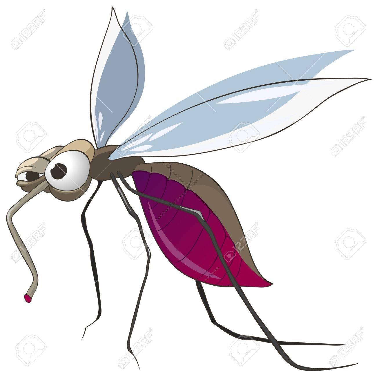 Cartoon Character Mosquito Stock Vector - 10303533