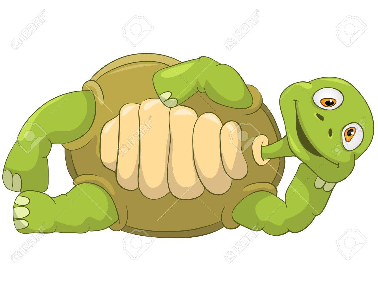 Funny Turtle  Lie Stock Photo - 13533758