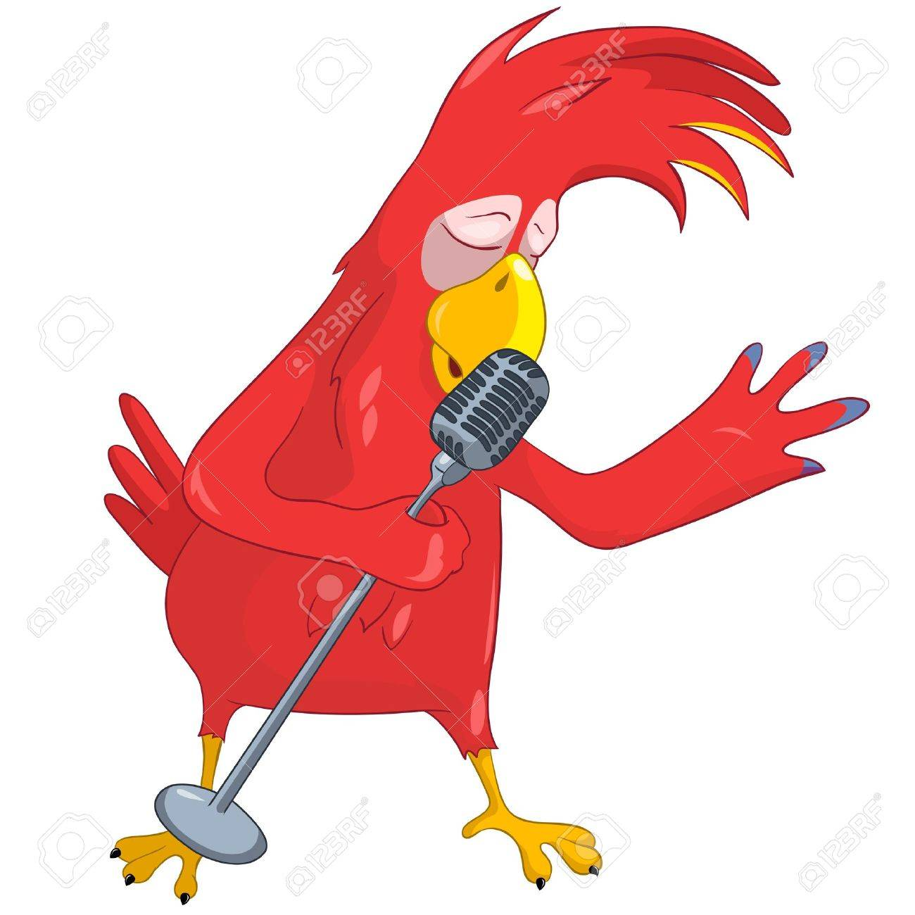 funny parrot singing royalty free cliparts vectors and stock