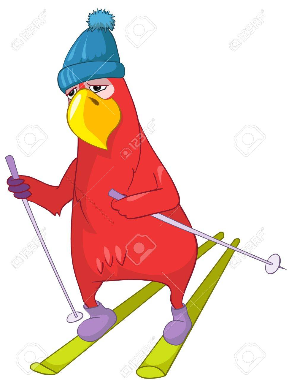 Funny Parrot  Skiing Stock Vector - 13963861