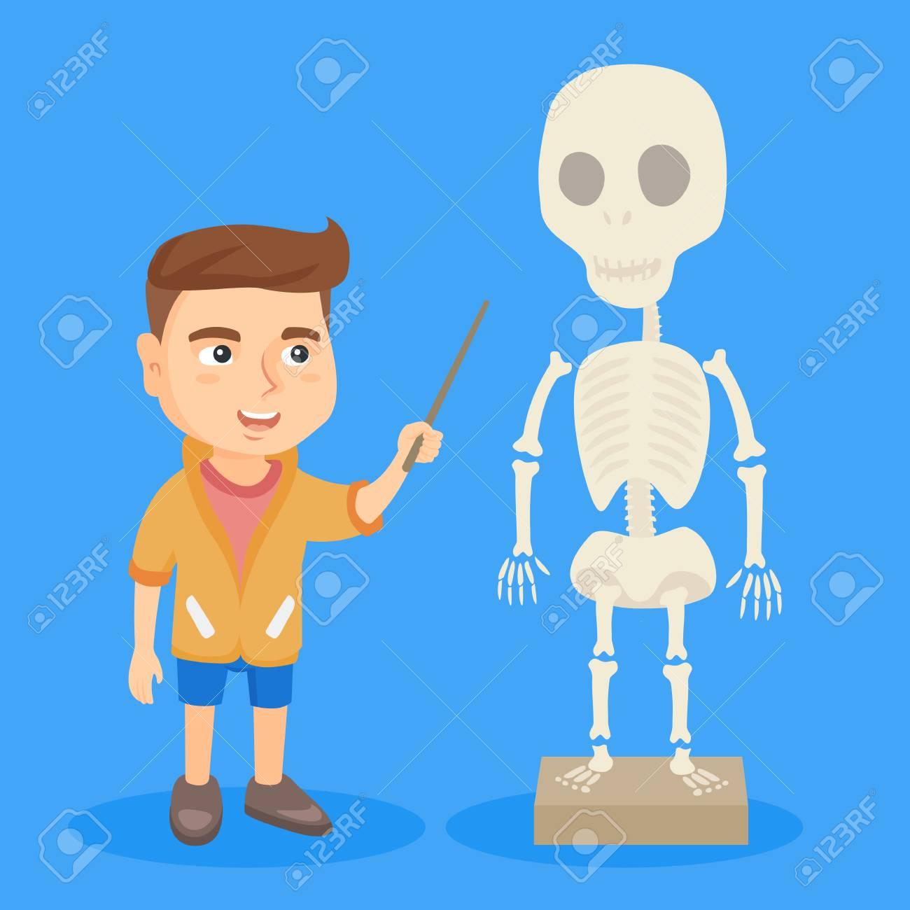 Pequeño Colegial Caucásico Que Estudia El Esqueleto Humano. Colegial ...