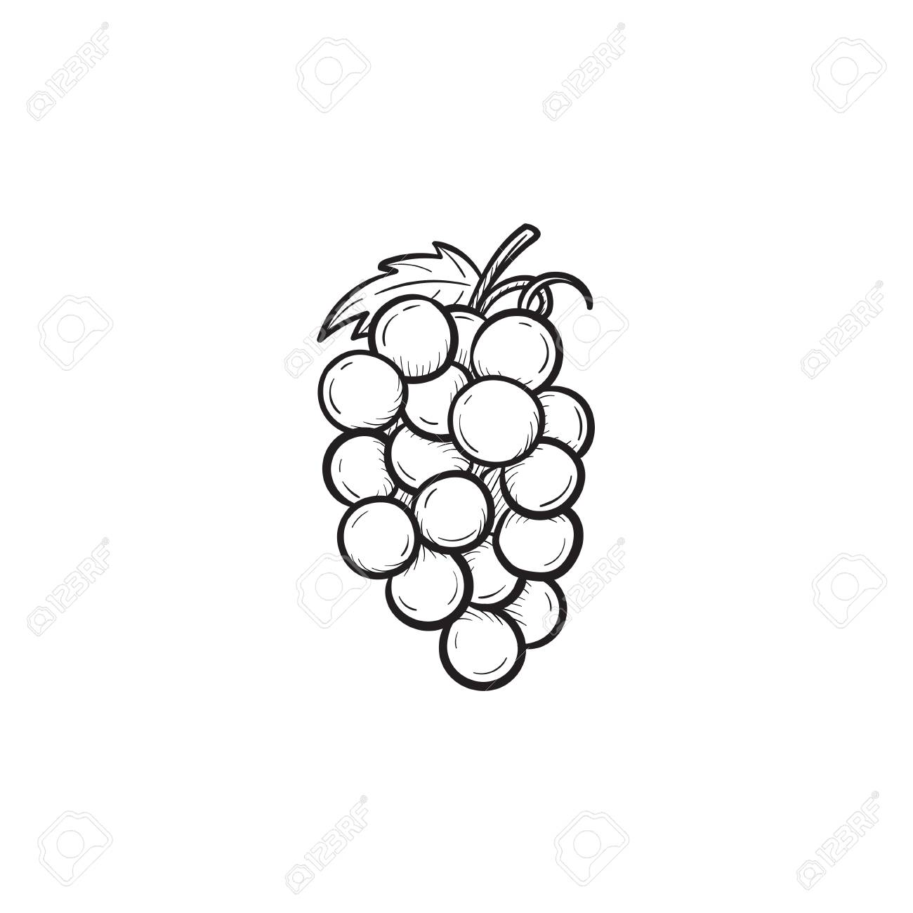 Vector Hand Drawn Bunch Of Grapes Outline Doodle Icon Bunch Royalty Free Cliparts Vectors And Stock Illustration Image 92861794