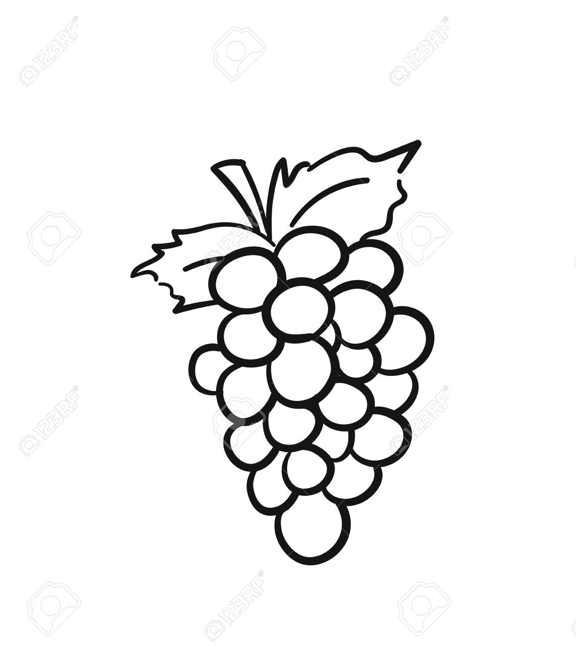 Bunch Of Grapes With Leaf Sketch Icon For Web Mobile And Infographics Royalty Free Cliparts Vectors And Stock Illustration Image 95847516