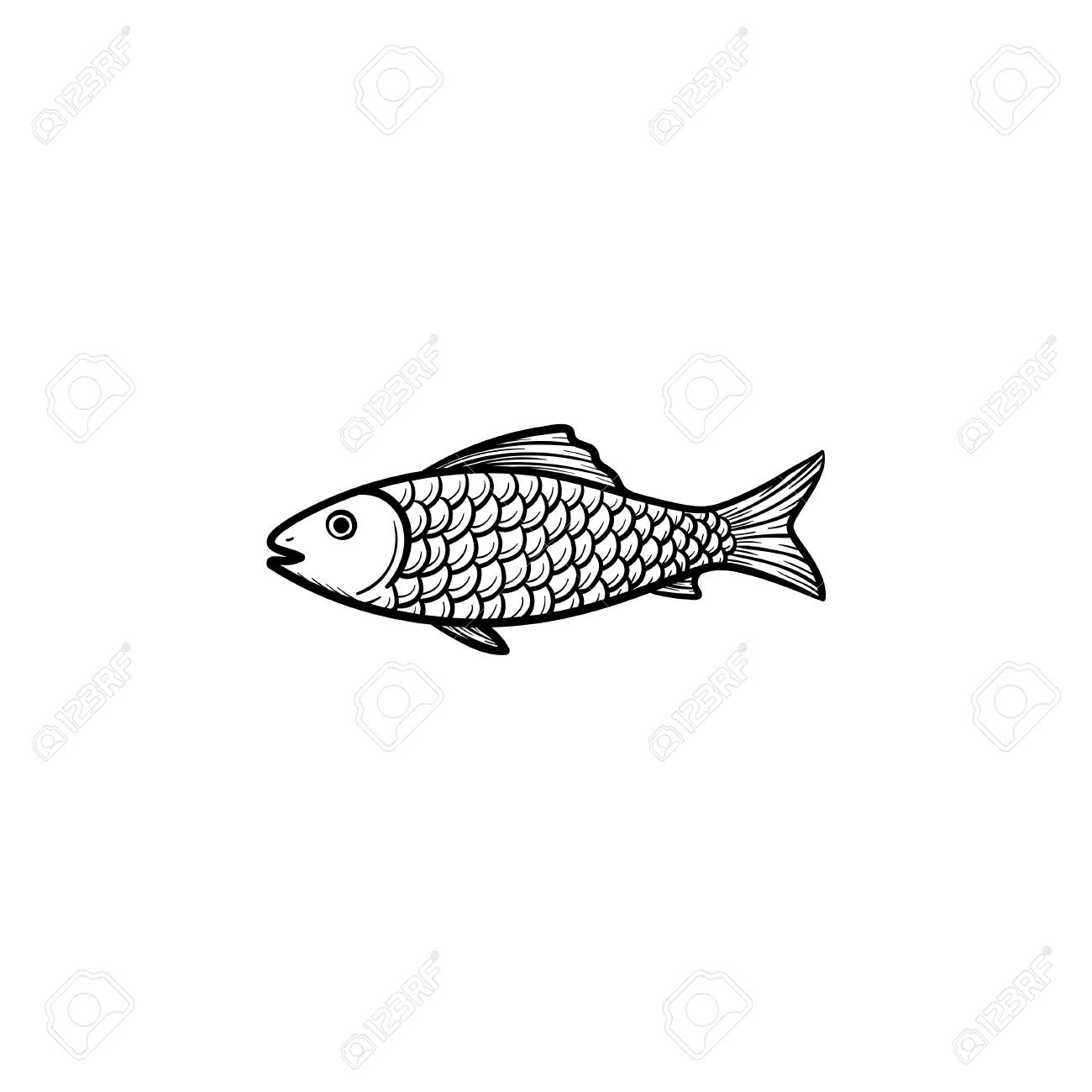 - Raw Fish Hand Drawn Outline Doodle Icon. Vector Sketch