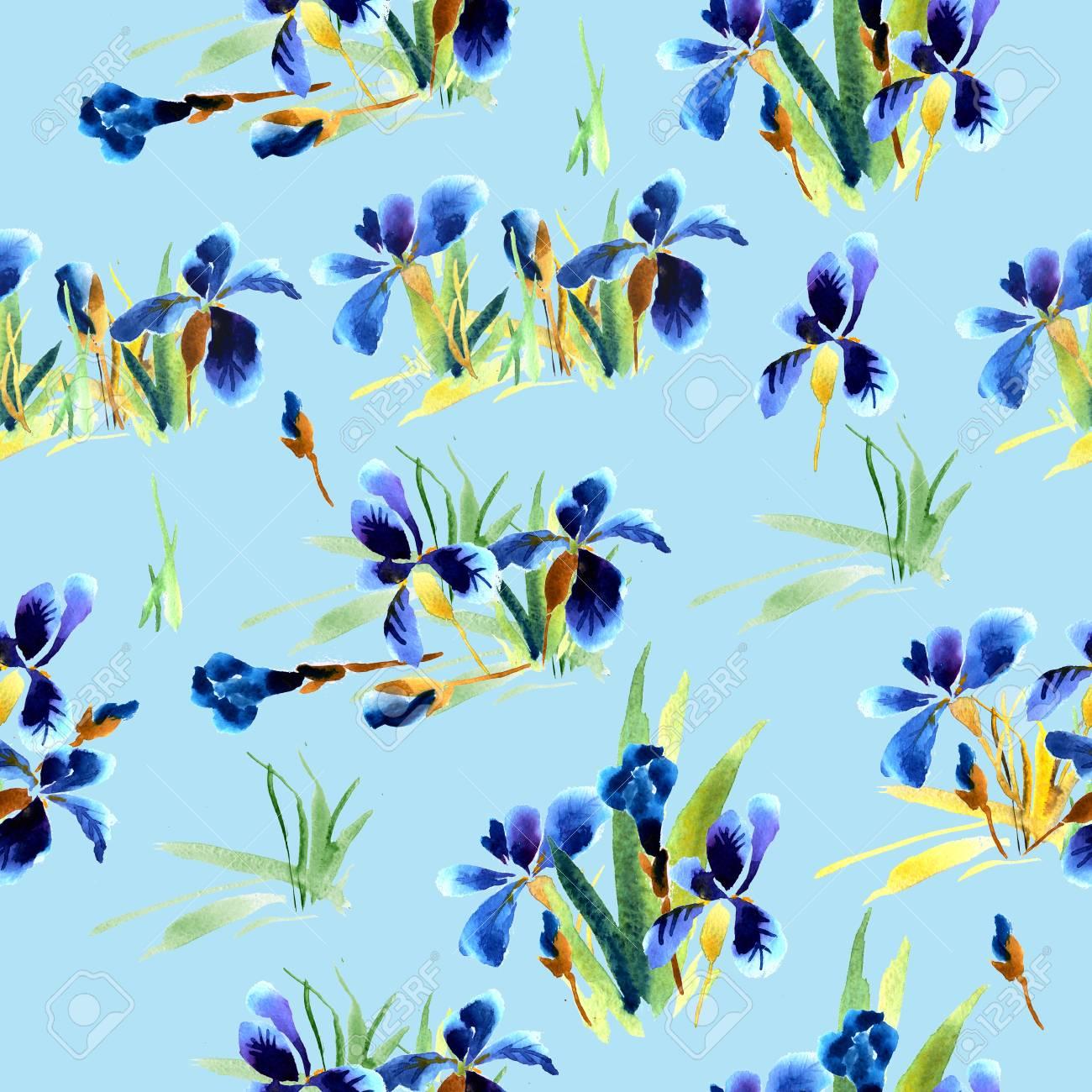 Patron Floral Con Flores Y Hojas De Iris Azul Acuarela De La Mano