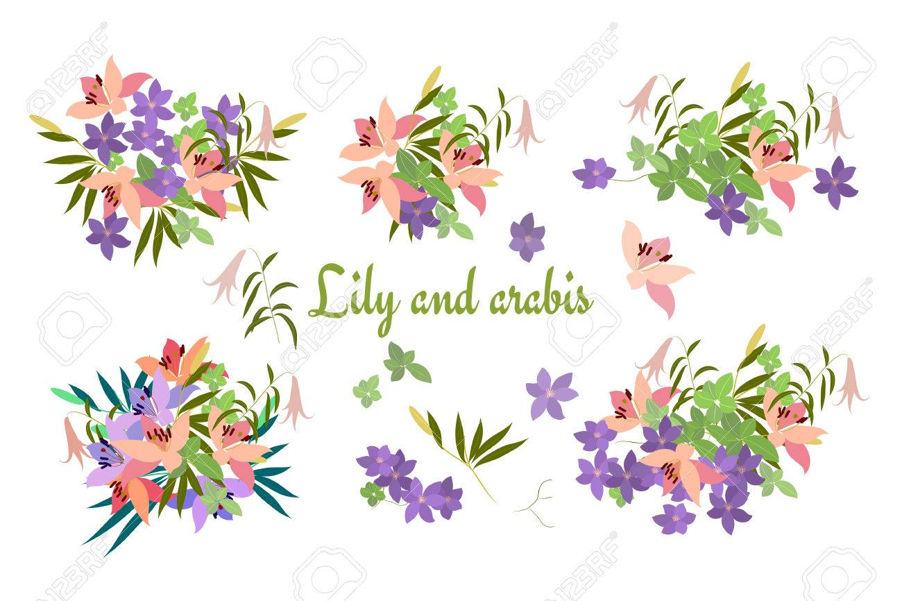 Vector Greeting Card With Pink Lily And Violet Arabis Flower