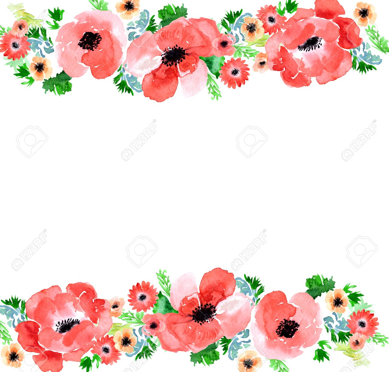 Floral Watercolor Background Anemone Garden Flowers Anemone Stock