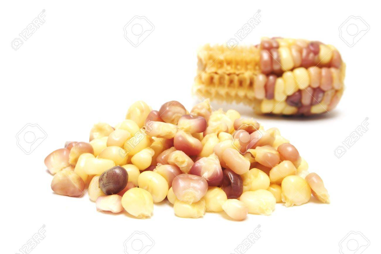 Boiled Waxy Corn On White Background Stock Photo, Picture And ...