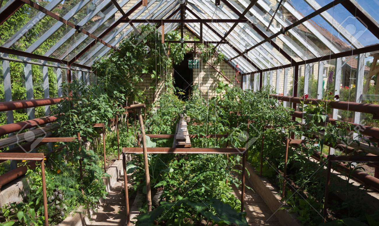 Marvelous Natural Small Garden Greenhouse In A Countryside Home Interior And Landscaping Ologienasavecom