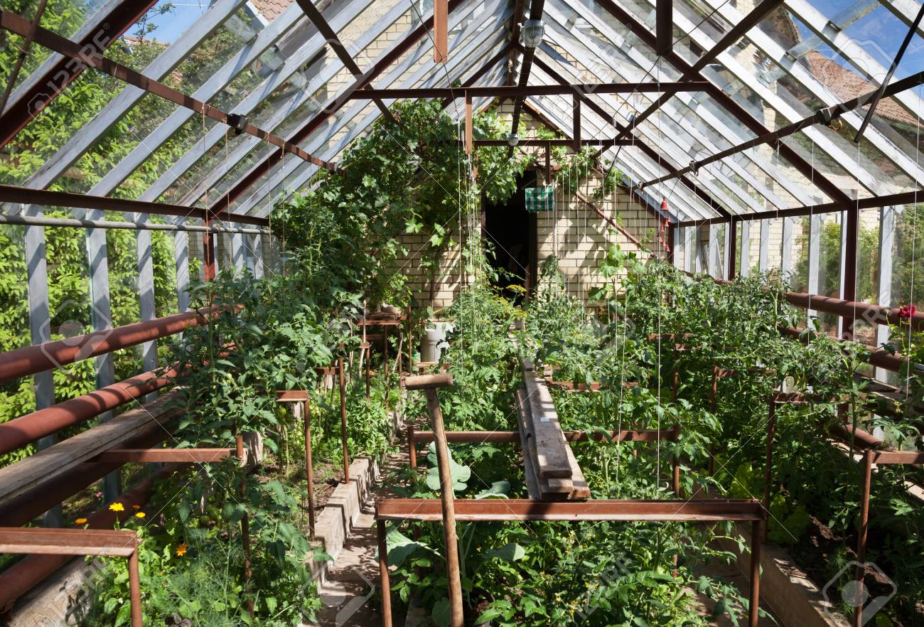 Enjoyable Natural Small Garden Greenhouse In A Countryside Home Interior And Landscaping Ologienasavecom