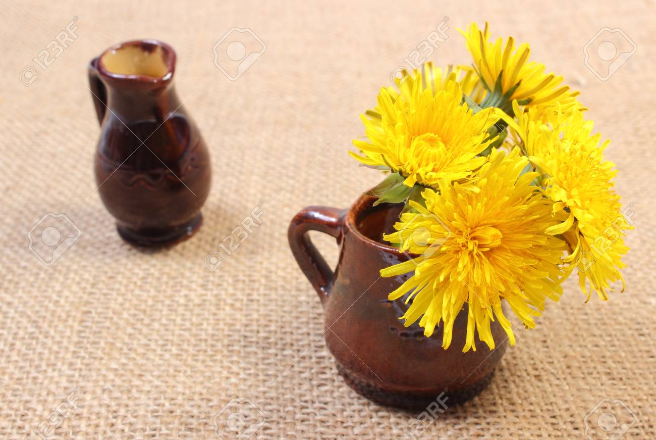 123RF.com & Bouquet of yellow fresh flowers of dandelion in brown vase and..
