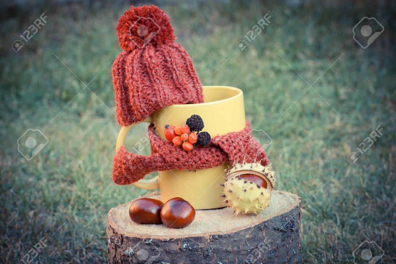 Weinlesefoto, Gelbe Schale Heißer Tee Mit Woolen Kappe Wickelte ...