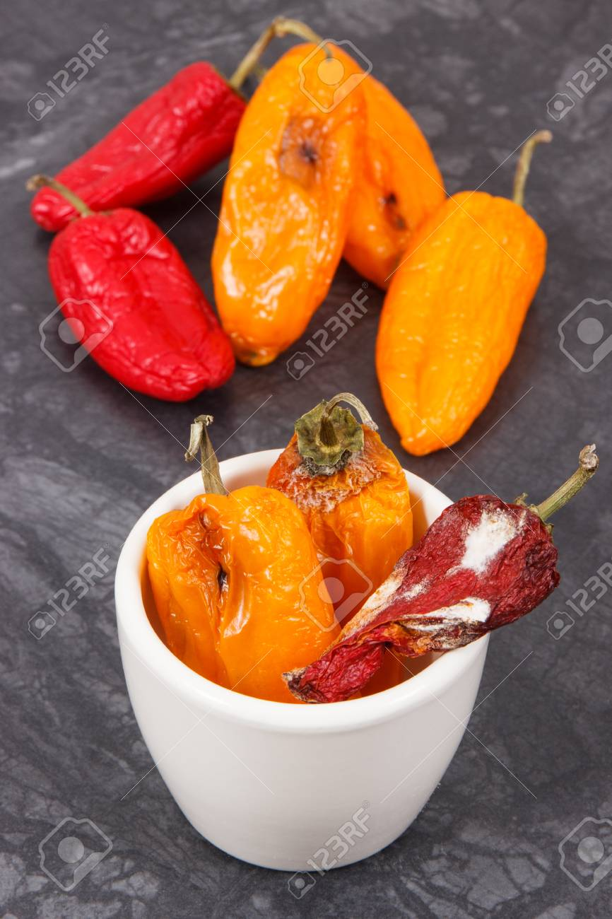 Old wrinkled peppers with mold, concept of unhealthy and disgusting