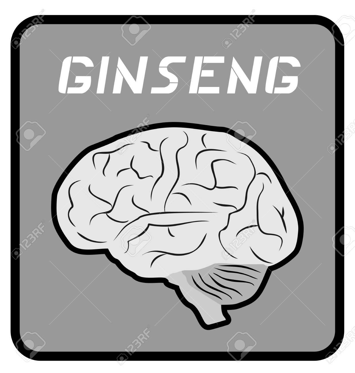 Ginseng brain emblem Stock Vector - 13532442