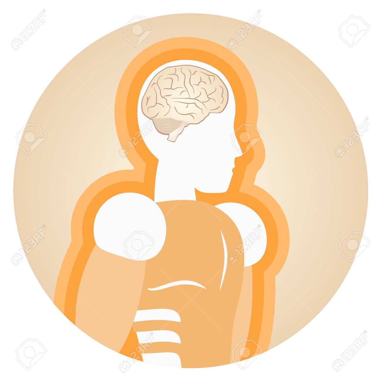 Medical brain human design Stock Vector - 15291956