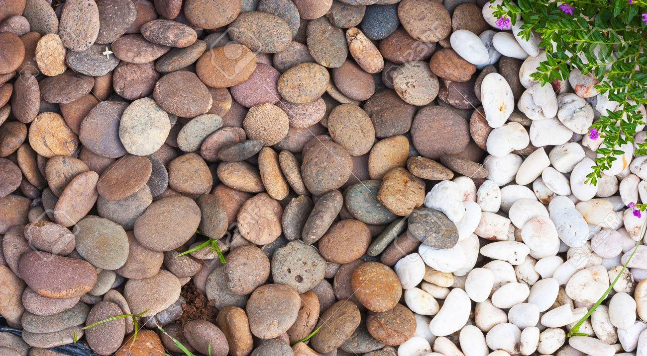 Multi Colored River Stones Into Decorative Gardens