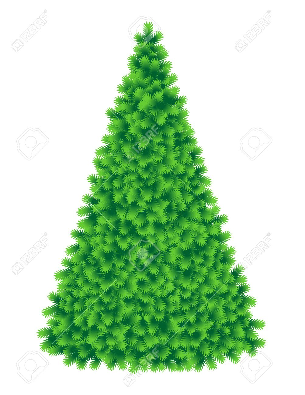 Christmas tree, tall and fluffy, of live green color, without baubles,  ornaments