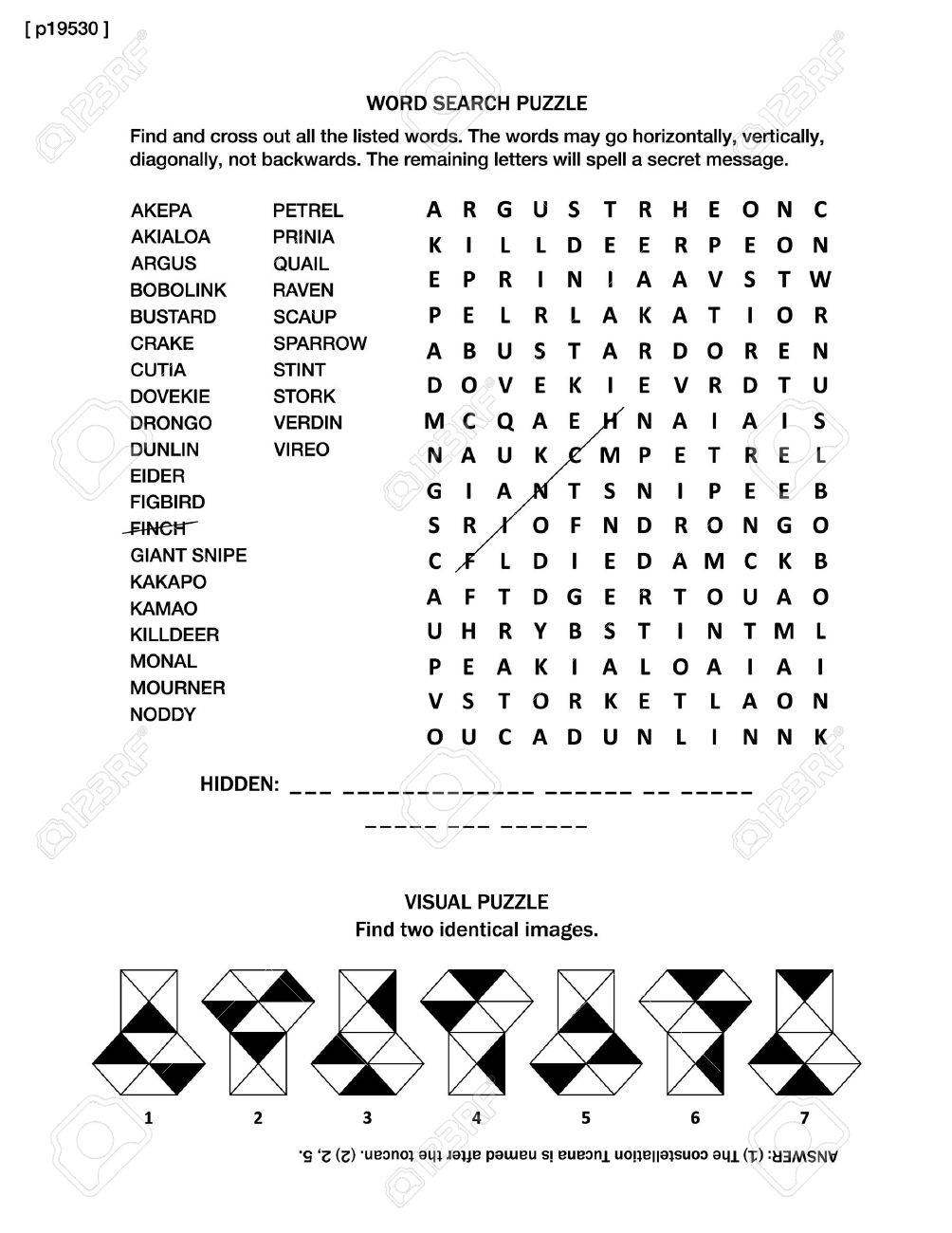 Puzzle Page With Two Brain Games Word Search English Language And Visual